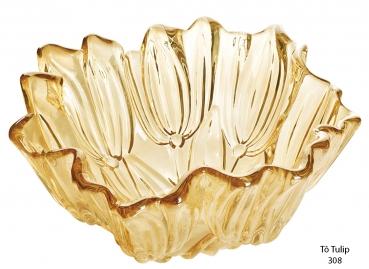 Tô Tulip vàng
